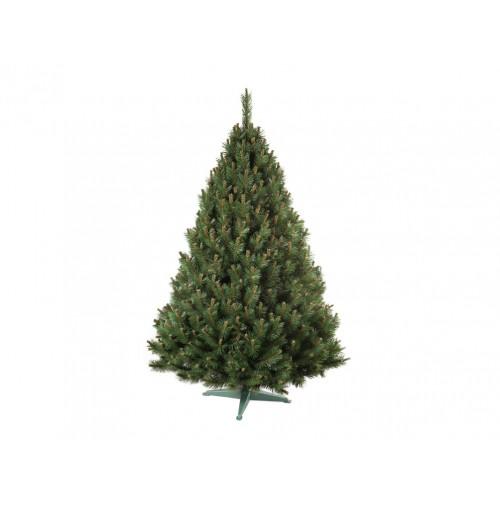 Vianočný stromček Borovica Silver hustá 160cm